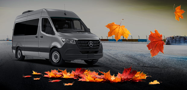 Autumn leaves around a Sprinter Van